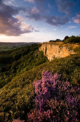 North York Moors, National Park, England