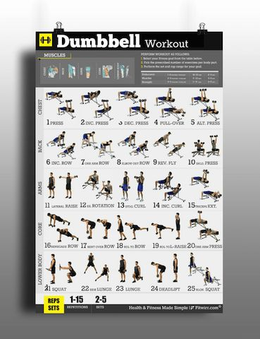 Dumbbell Workouts Poster for Men to Build Muscles & Lose ...