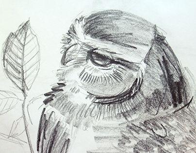"Check out new work on my @Behance portfolio: ""сова"" http://be.net/gallery/31153755/sova"