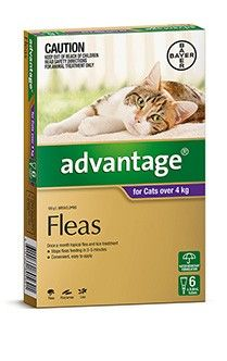Advantage Cat 4Kg Plus Large - 4's & 6's - Safe to use on pregnant and lactating animals. Kills fleas and prevents reinfestation for up to four weeks. Also kills flea larvae in pet surroundings. Convenient and easy to apply.