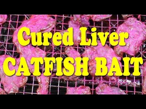 Secret Catfishing Bait!!! Fishing for catfish with cured liver - YouTube