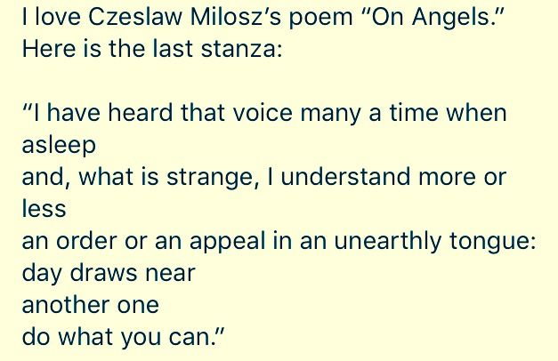 Czeslaw Milosz's poem on angels as seen in a Facebook post by children's author Kate DiCamillo. Beautiful!