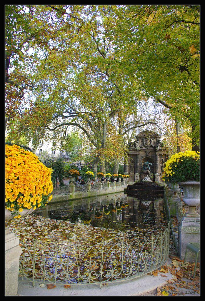 Couleurs d 39 automne au jardin du luxembourg paris france for Au jardin du luxembourg