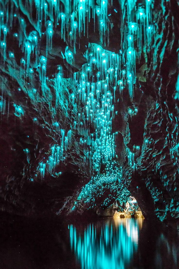 This Is the Only Place You Have to Go This Summer via @MyDomaine | Glowworm Caves, New Zealand