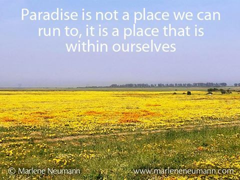 Paradise is not a place we can run to, it is a place within ourselves... Love Marlene Inspirational quotes by Marlene Neumann. Photographer, teacher, author, philanthropist, philosopher. Marlene shares her own personal quotations from her insights, teachings and travels. Order your pack of Inspirational Cards! www.marleneneuman...