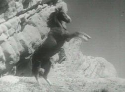 Champion the Wonder Horse - Saturday morning cinema viewing