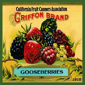 Olde America Antiques | Quilt Blocks | National Parks | Bozeman Montana : Vintage Canning Labels Hot Pads - California Fruit Raspberries