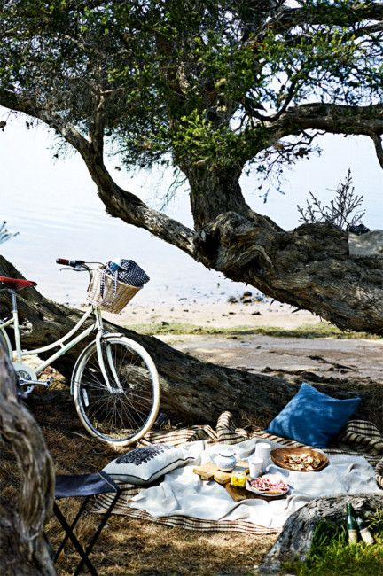 bike to a picnic