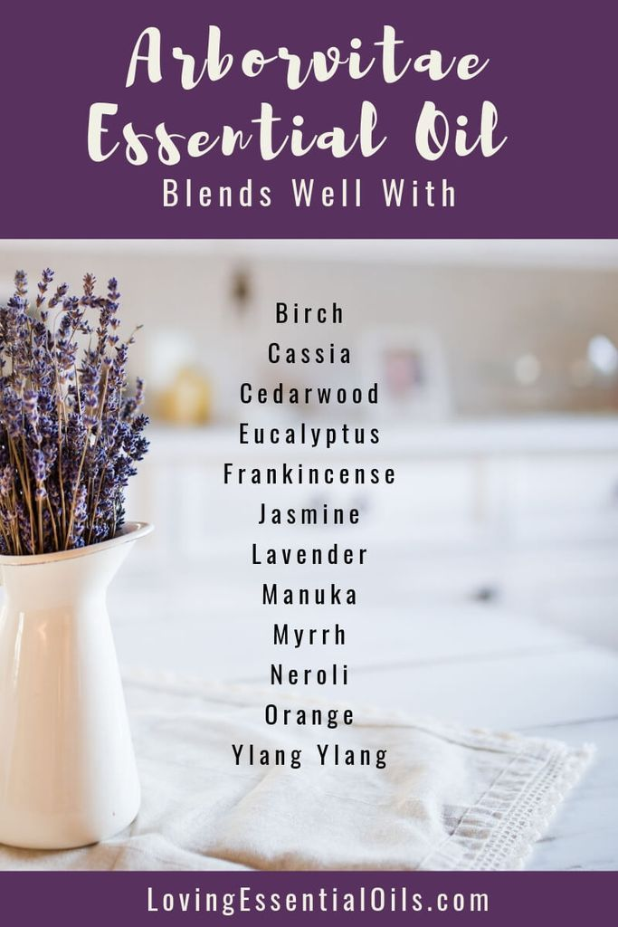 20+ What blends well with lavender ideas in 2021