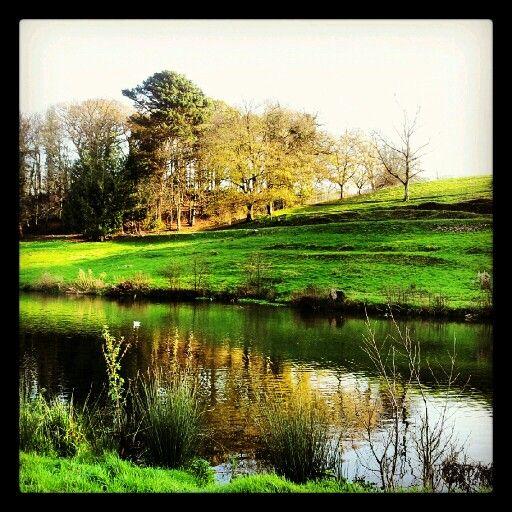 Chard, Somerset.