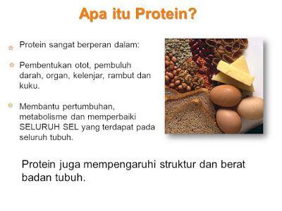 mengenal protein