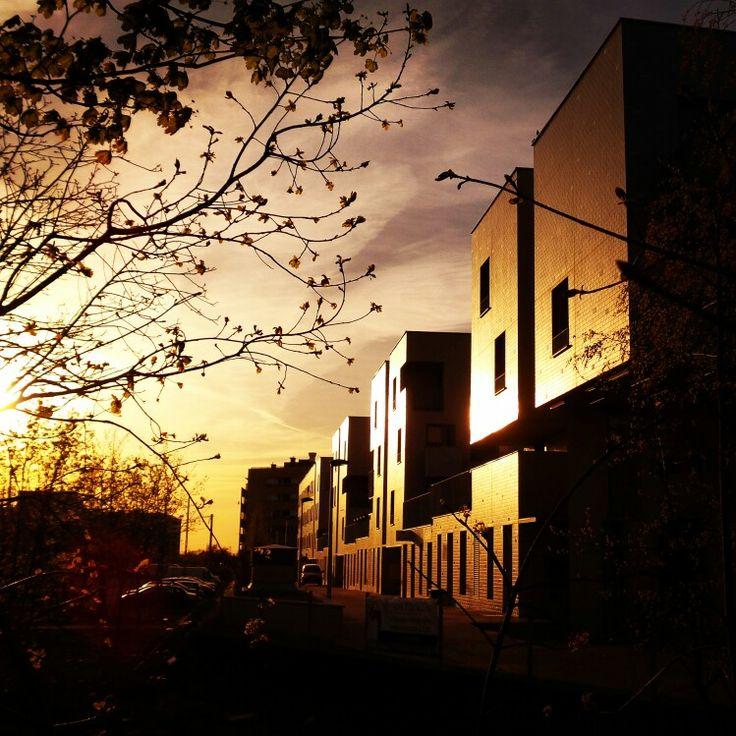 #miejski #zachod #slonca #krzycka ⭐ #urban #sunset # ⭐ #goldenhour #zachodslonca #wroclove #wroclaw #krzyki #dolnoslaskie #igerswroclaw #igerspoland #igerspolska #polska #poland #igersoftheday