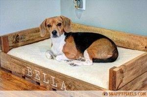 231976_pallet-dog-bed-4 - Snappy Pixels