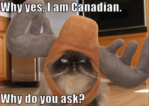 Canadian cats....
