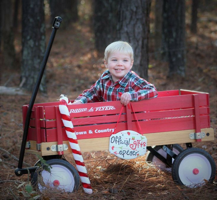 Christmas Mini with little red wagon # ...