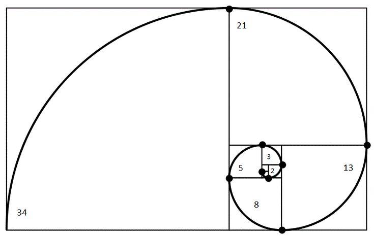 Espiral aurea inscrita en rectangula aureo.