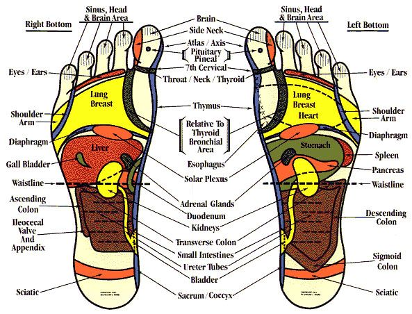 31 best Traditional Chinese Medicine images on Pinterest