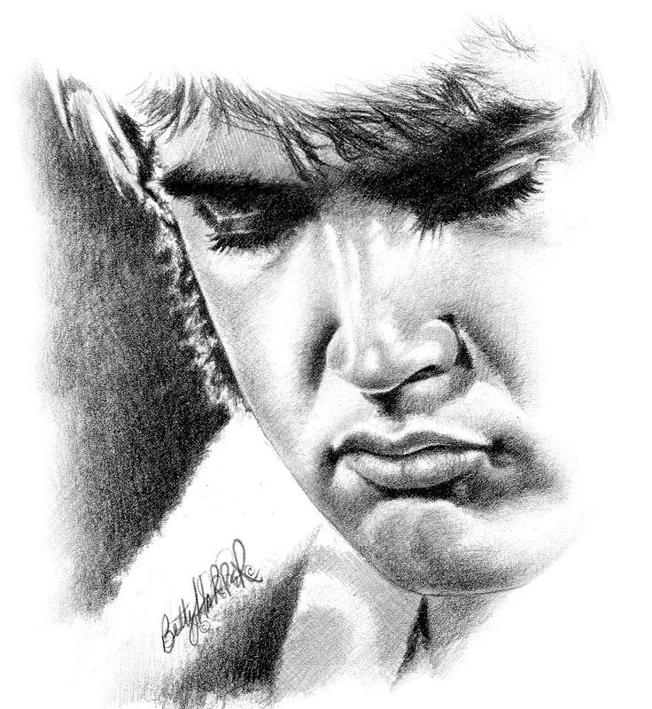 Elvis in the 70s · artist namesface