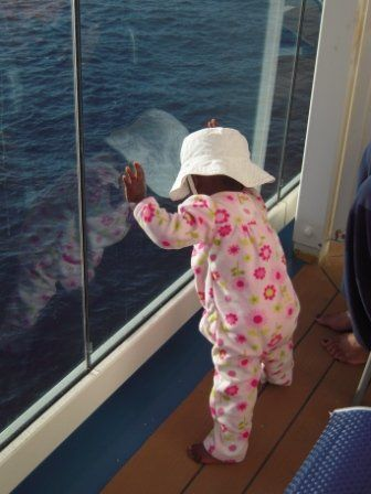 Tips for Taking a Toddler on a Cruise