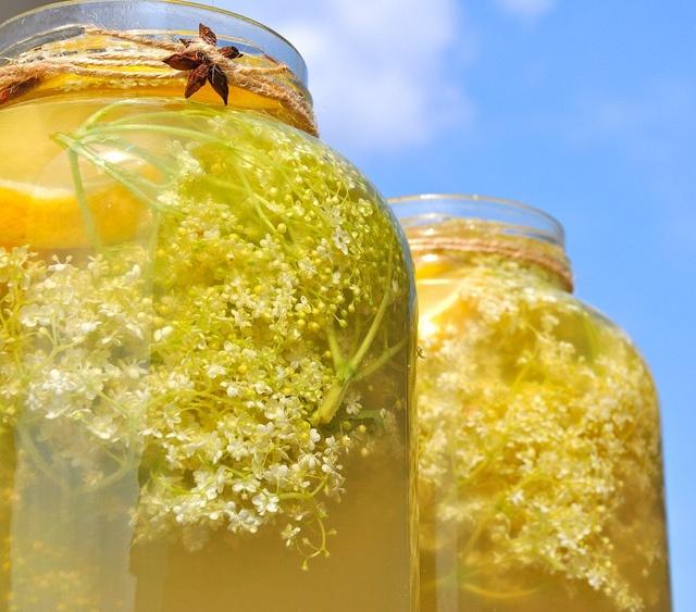 Licoarea lui Elle ©Olivia Steer: 1 borcan de 5l, 10 flori de soc, 300 g de miere de salcam, 1 lămîie, 1 steluță de anason, 4,5 l de apa filtrată/plată. Într-un borcan îndestulat cu miere dizolvată în apa, se așează florile de soc. Se fereacă gura borcanului cu felii de lămaie și se sigilează cu steluța de anason. Se lasă de seară pană dimineață, acoperind borcanul cu o panză fină/un tifon curat, iară în zori se cearcă cu linguroiul de lemn.