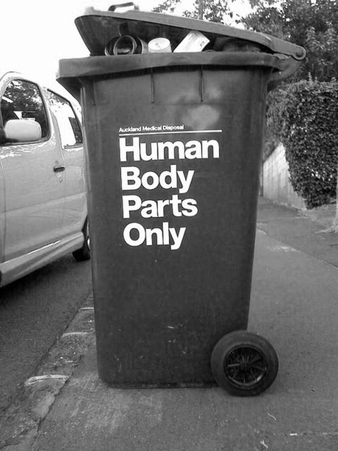 : Zombies Apocalyp, Dexter Morgan, Body Parts, Halloween Decoration, The Neighborhood, Street Art, Trash Bins, Human Body, Streetart