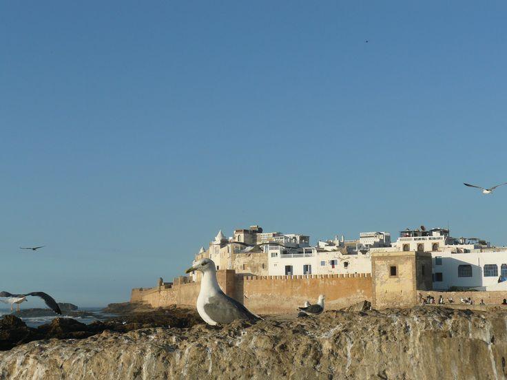 Essaouira - Marocko