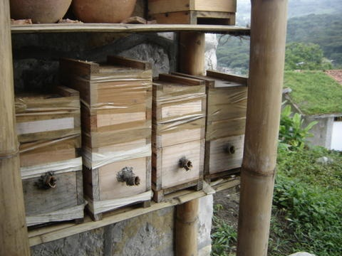 """Experimental wooden hives Hives for S. mexicana, """"modern"""" design"""