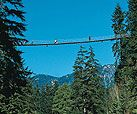 Capilano Suspension Bridge, North Vancouver BC