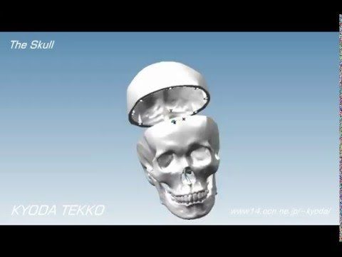 Hypermill The Skull by 5-Axis Machining DMG DMU60 monoBLOCK - YouTube