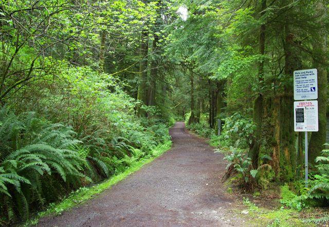 Day Hikes Near Victoria, Canada: The Coastal Trail in East Sooke Park