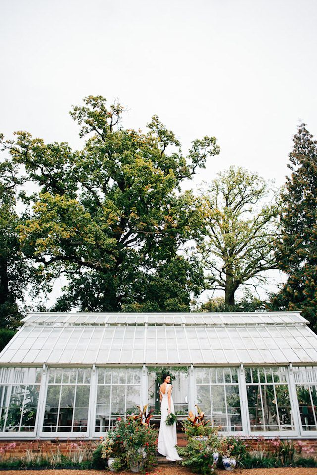 Greenhouse wedding | Amy Lewin Photography | see more on: http://burnettsboards.com/2015/01/botanical-beauty-greenhouse-wedding-editorial/