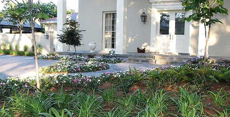 17 best images about uptown new orleans landscaping on - Olive garden spring hill tennessee ...