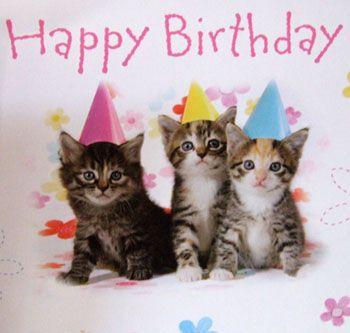 Cat In The Hat Birthday Meme