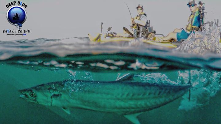 The @tandem_kayak_fishing  crew Slade and Colby getting two nice #kingfish today and missing having a few spit hooks.  Back at it tomorrow.  #deepbluekayakfishing #hobiefishingteam #staycation #vacation #instagood #kayaking #fishing #florida #offshore #followforfollow @tandem_kayak_fishing @yakgear  @railblaza @kscottart @pennfishing @nauticalventures @soulfishingash @hobiecatcompany @hobiefishing @knektusa #knektdome #baitcastreels #spinreels, #lures and #kayakfishing #liveStrikelures…