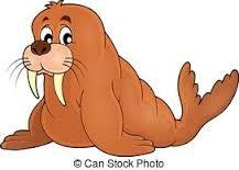 Afbeeldingsresultaat voor walrus tekening