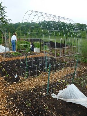 I use these for an archway over some steps with vines growing on it.    They work really well, are sturdy and can really take the wind.  Gonna use them this year for my tomatoes in the garden and horizontally for my raspberries, cucumbers, and peas.