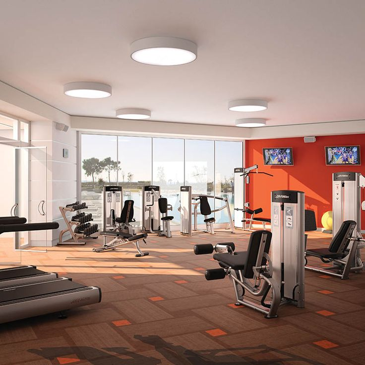 Huge Home Gym with Red Walls