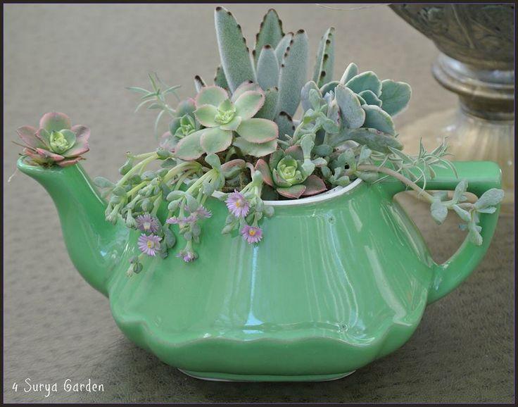Mais uma forma maravilhosa de decorar com Suculentas. Aproveite as nossas sugestões   Lá na Roça