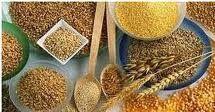"""Como substituir a farinha de trigo nos bolos: 1. Substituir as farinhas com glúten A farinha de trigo tem características próprias que facilitam a confecção do pão, bolos e bolachas. Encontramos este """"truque de cozinha"""" que nos parece óptimo, e por isso o colocamos aqui. - Nas receitas que tem com trigo, se quiser mudar para uma farinha sem glúten, aumente cerca de 25% a quantidade de bicarbonato de sódio ou de fermento em pó. - Nas receitas de pão, a quantidade de fermento não precisa de…"""