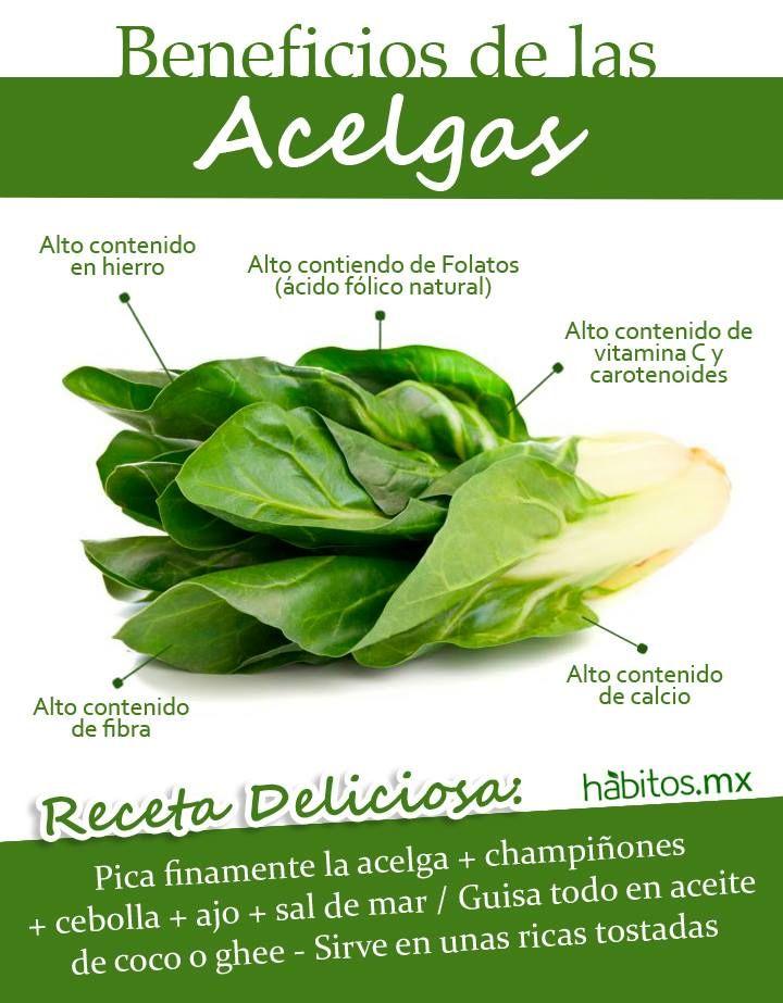 Hábitos Health Coaching | BENEFICIOS DE LAS ACELGAS