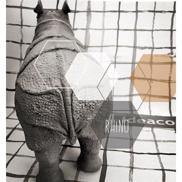 Rhino's cute butt...