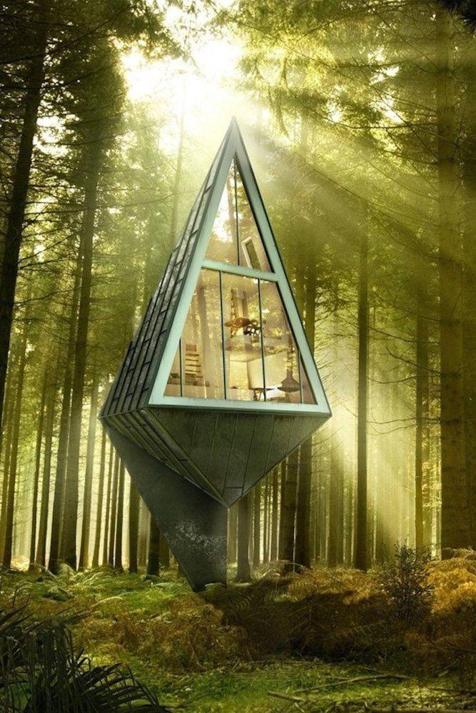 Nádherné domy na stromech uprostřed lesa