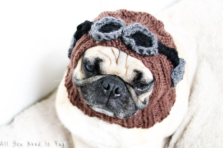 Pug Balaclava Knitting Pattern : 17 Best images about Crocheting on Pinterest Minion ...