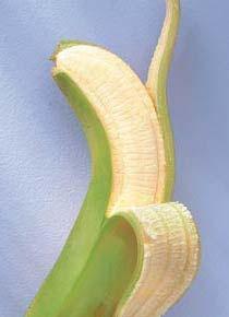 Biomassa de banana verde  O purê de banana verde pode ser consumido com mingau de aveia, sopa ou outros alimentos quentes  • 4 bananas-nanicas verdes    Modo de fazer    Coloque as bananas com a casca numa panela de pressão e cubra com água. Cozinhe por 15 minutos e escorra. Retire a casca e amasse (ou passe no processador) a polpa ainda quente até formar um purê. Guarde na geladeira (dura quatro dias) e use aos poucos – no mingau de aveia, na sopa ou misturado a outro alimento quente