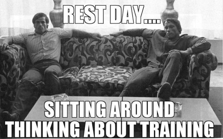 Rest day meme with arnold and franco