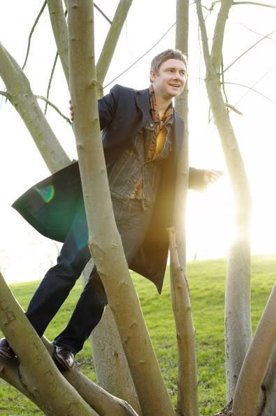 Martin Freeman in a tree. You're welcome.