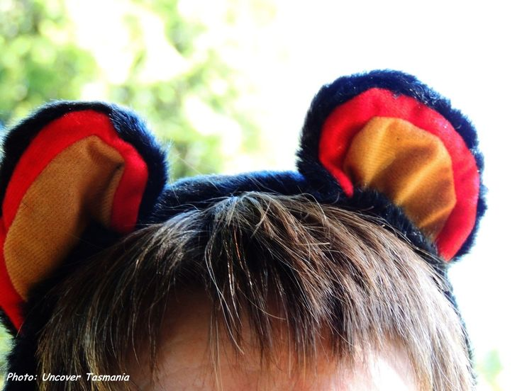 Wearing Tassie Devil ears for a good cause. Save the Tasmanian Devil Appeal.