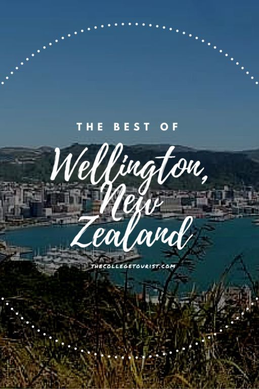 Where to Go and What to Eat in Wellington, New Zealand