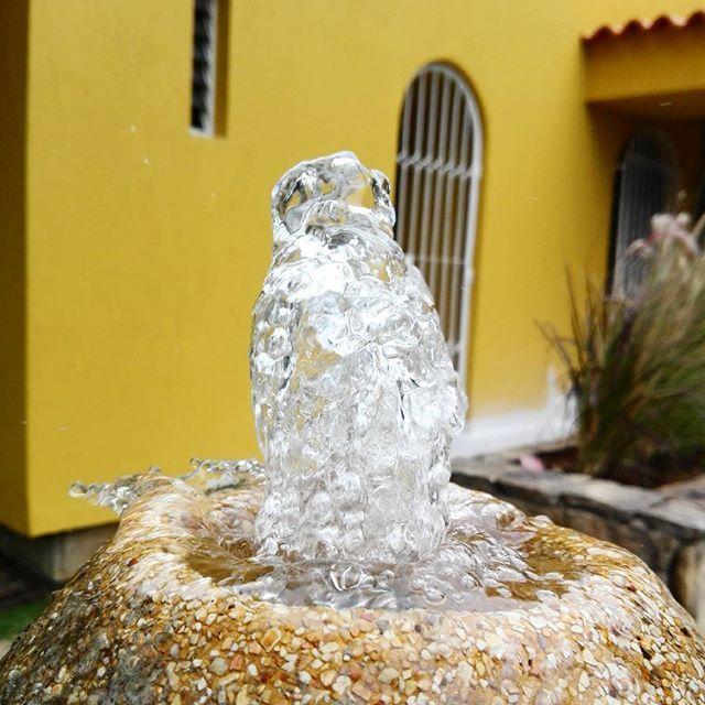 Para días calurosos, encender la fuente para refrescar el paisaje #acincoteam #diseñoexterior