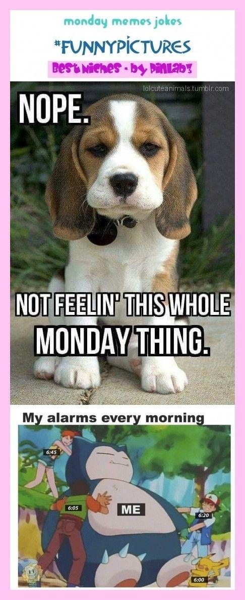 Monday memes jokes monday memes jokes Montag Meme Witze